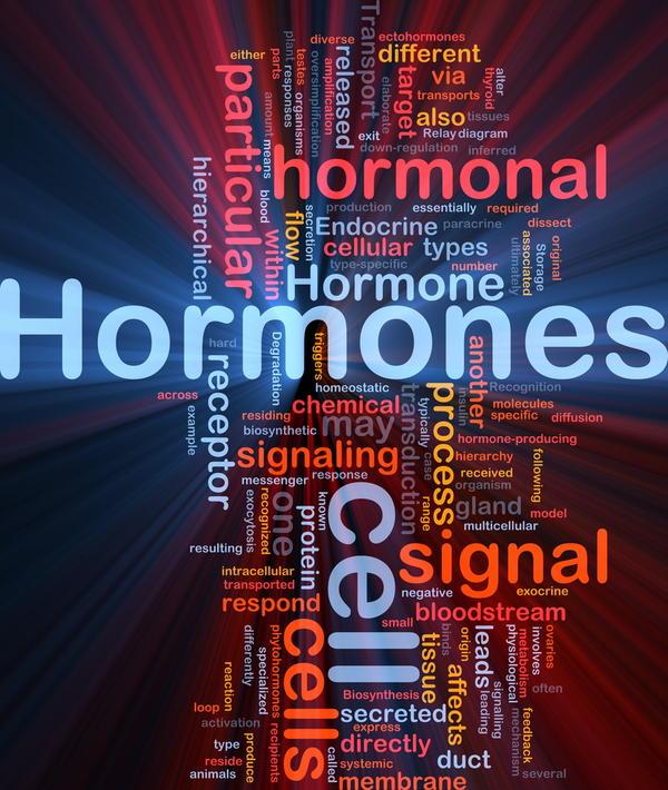 steroidogenesis assay